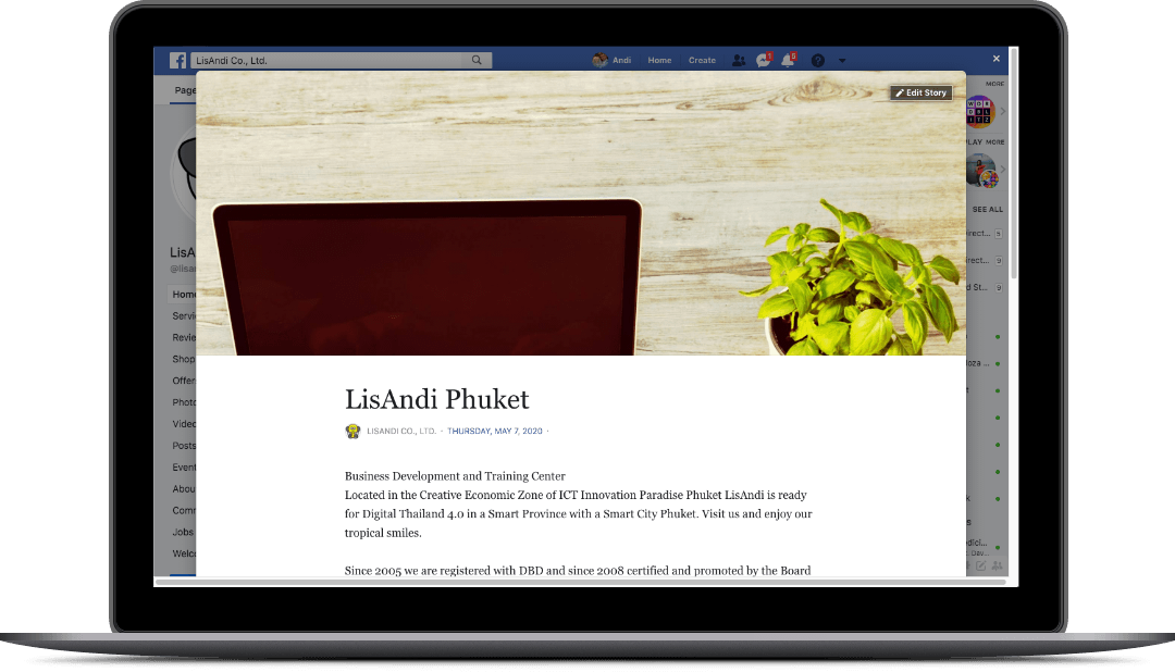 lisandi.com