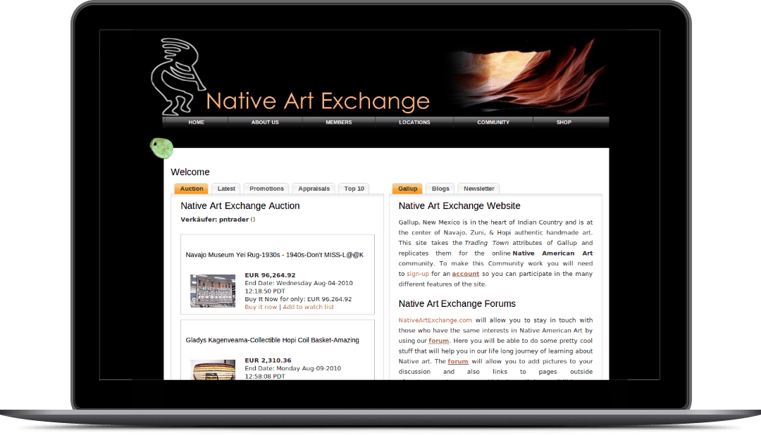 nativeartexchange.com